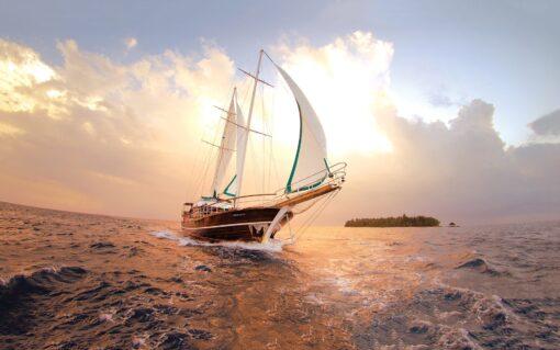 Ocean Energy Cruise 1