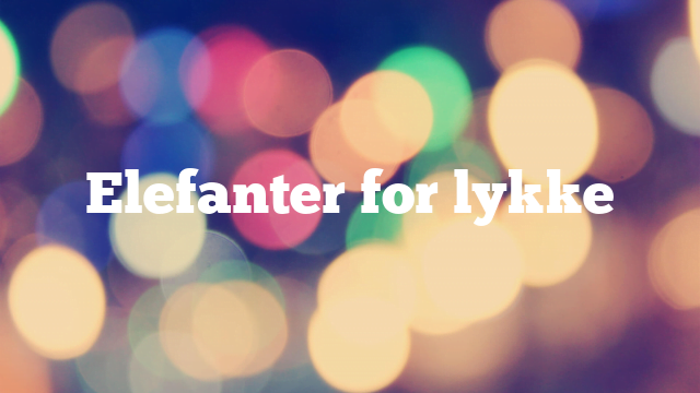 Elefanter for lykke